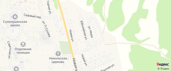 Юбилейная улица на карте Солонешного села с номерами домов