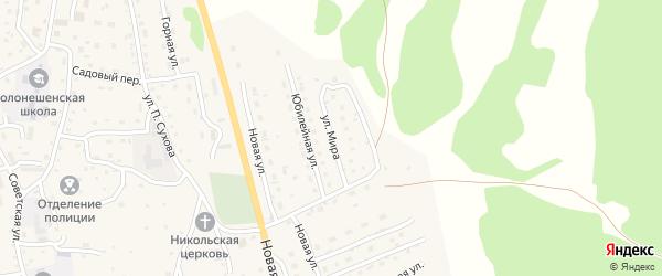 Улица Мира на карте Солонешного села с номерами домов