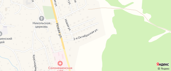 2-я Октябрьская улица на карте Солонешного села с номерами домов