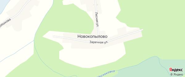 Заречная улица на карте села Новокопылово с номерами домов