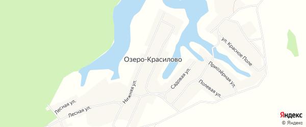 Карта села Озеро-Красилово в Алтайском крае с улицами и номерами домов
