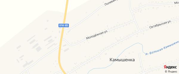 Молодежная улица на карте села Камышенки с номерами домов