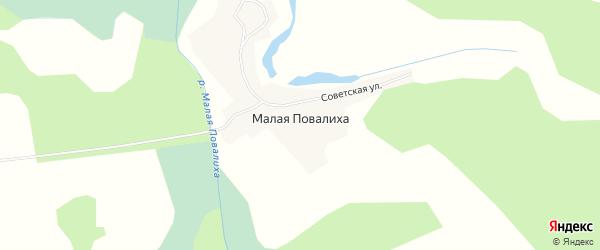 Карта села Малой Повалиха в Алтайском крае с улицами и номерами домов