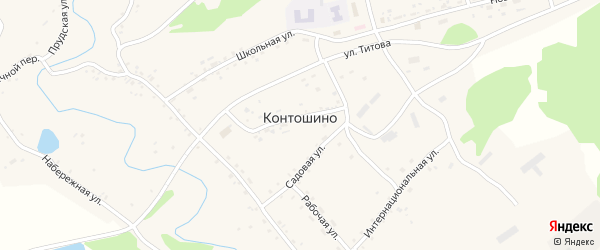 Речной переулок на карте села Контошино с номерами домов