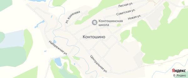 Карта села Контошино в Алтайском крае с улицами и номерами домов