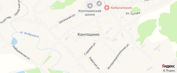 Центральная улица на карте села Контошино с номерами домов