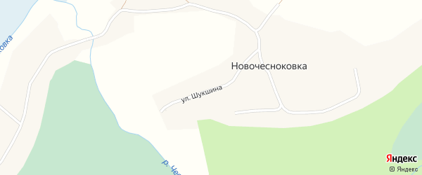 Улица Шукшина на карте села Новочесноковки с номерами домов