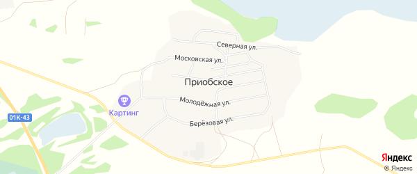 Карта Приобского села в Алтайском крае с улицами и номерами домов