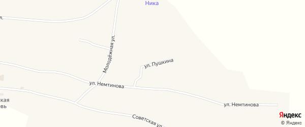 Улица Пушкина на карте села Новопокровки с номерами домов