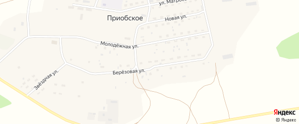 Березовая улица на карте садового некоммерческого товарищества N 11 с номерами домов