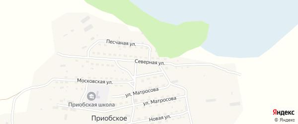 Северная улица на карте Приобского села с номерами домов