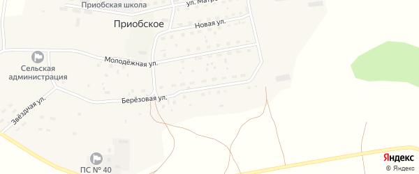 Березовая улица на карте Приобского села с номерами домов