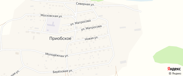 Новая улица на карте Приобского села с номерами домов