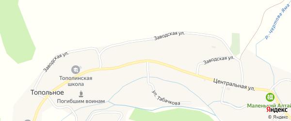 Центральная улица на карте Топольного села с номерами домов