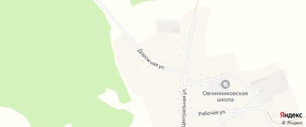 Дорожная улица на карте села Овчинниково с номерами домов