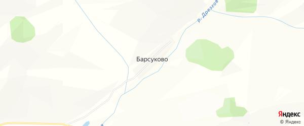 Карта села Барсуково в Алтайском крае с улицами и номерами домов