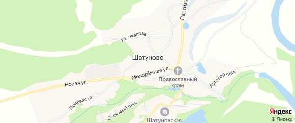 Карта села Шатуново в Алтайском крае с улицами и номерами домов