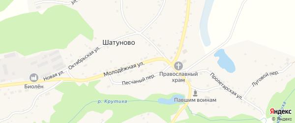 Молодежная улица на карте села Шатуново с номерами домов