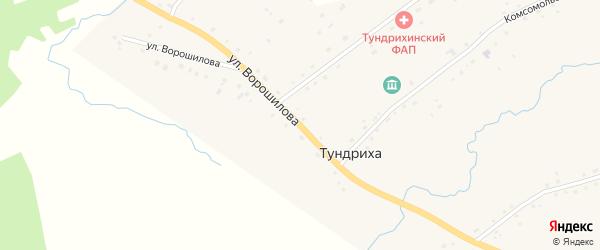 Улица Ворошилова на карте села Тундрихи с номерами домов