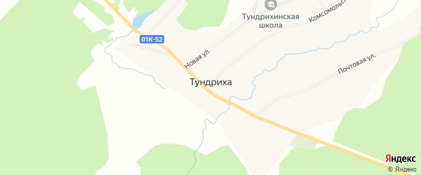 Карта села Тундрихи в Алтайском крае с улицами и номерами домов