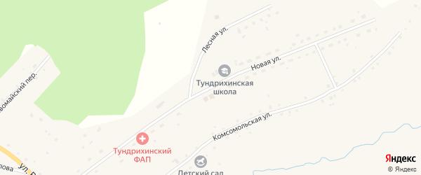 Новая улица на карте села Тундрихи с номерами домов