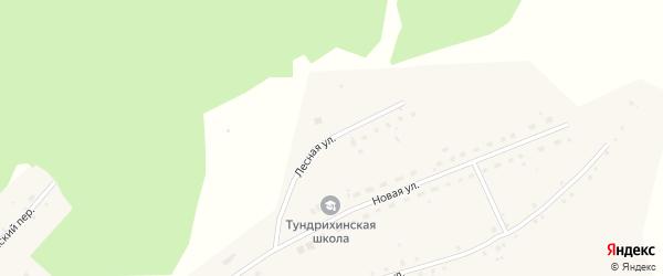 Лесная улица на карте села Тундрихи с номерами домов