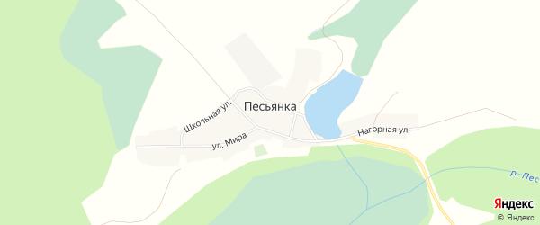 Карта села Песьянки в Алтайском крае с улицами и номерами домов