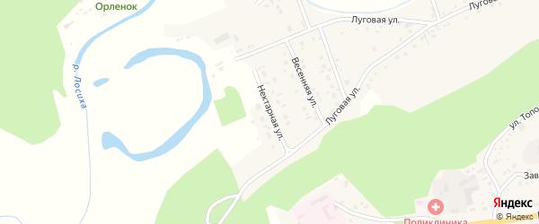 Нектарная улица на карте села Косихи с номерами домов