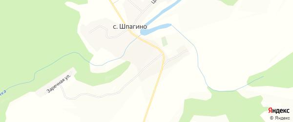 Карта села Шпагино в Алтайском крае с улицами и номерами домов