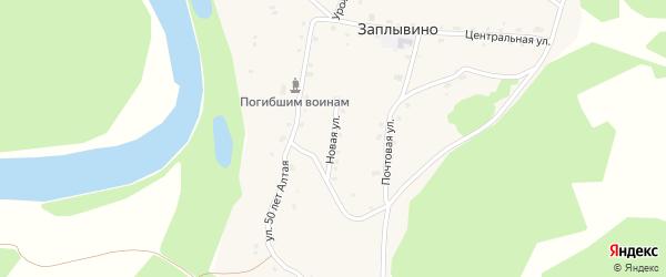 Новая улица на карте села Заплывино с номерами домов