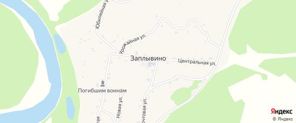 Улица 50 лет Алтайского на карте села Заплывино с номерами домов