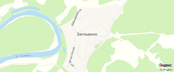 Карта села Заплывино в Алтайском крае с улицами и номерами домов