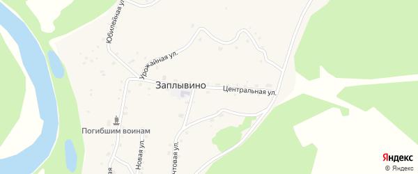 Центральная улица на карте села Заплывино с номерами домов