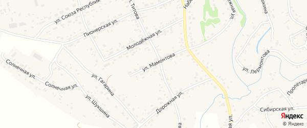 Улица Мамонтова на карте села Косихи с номерами домов