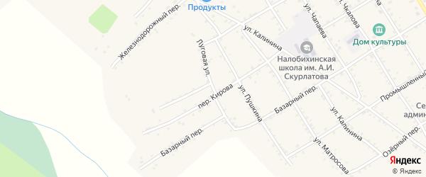 Луговая улица на карте села Налобиха с номерами домов