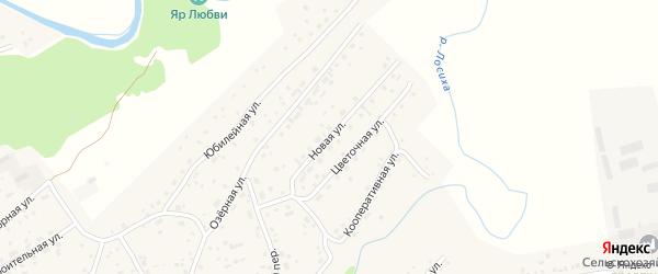 Новая улица на карте села Косихи с номерами домов