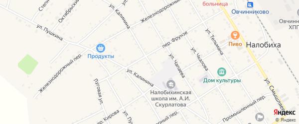 Улица Калинина на карте села Налобиха с номерами домов