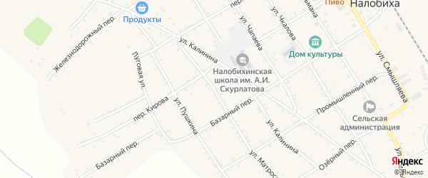 Улица Матросова на карте села Налобиха с номерами домов