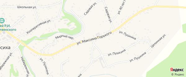 Улица М.Горького на карте села Косихи с номерами домов