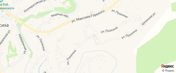 Улица Пушкина на карте села Косихи с номерами домов