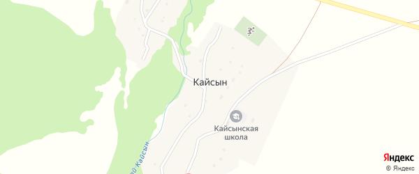 Заречная улица на карте села Кайсына с номерами домов