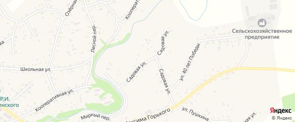 Садовая улица на карте села Косихи с номерами домов