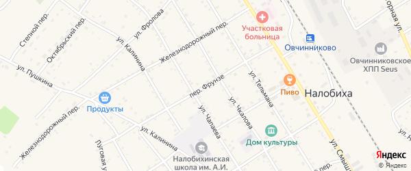 Переулок Фрунзе на карте села Налобиха с номерами домов