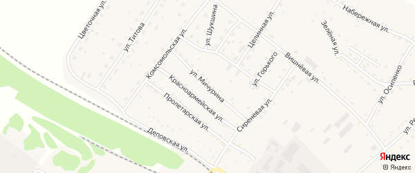 Улица Мичурина на карте села Налобиха с номерами домов