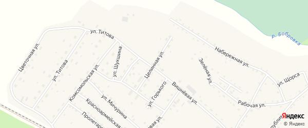 Целинная улица на карте села Налобиха с номерами домов