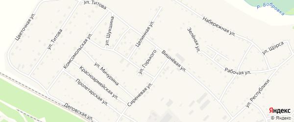 Улица Горького на карте села Налобиха с номерами домов