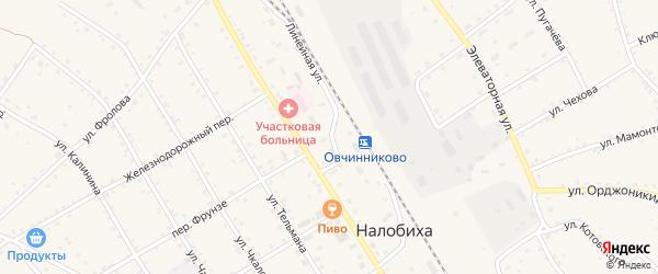 Линейная улица на карте села Налобиха с номерами домов