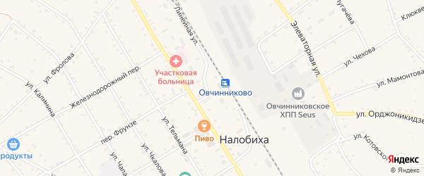 Бийская улица на карте села Налобиха с номерами домов