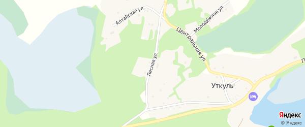 Лесная улица на карте поселка Уткуля с номерами домов