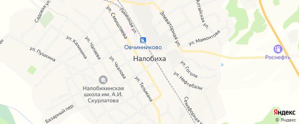 Карта села Налобиха в Алтайском крае с улицами и номерами домов